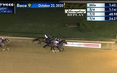 Merry Merry Mojo gets 3rd in Charles Town tilt.