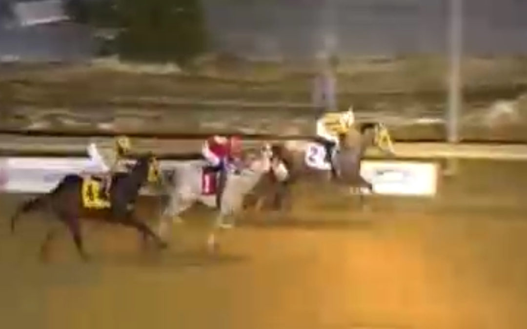 TapTapTap debuts for Blue Streak Racing with a 2nd at Charles Town!
