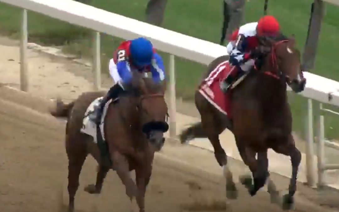 Rossa Veloce places in the Key Cents Stakes at Aqueduct!